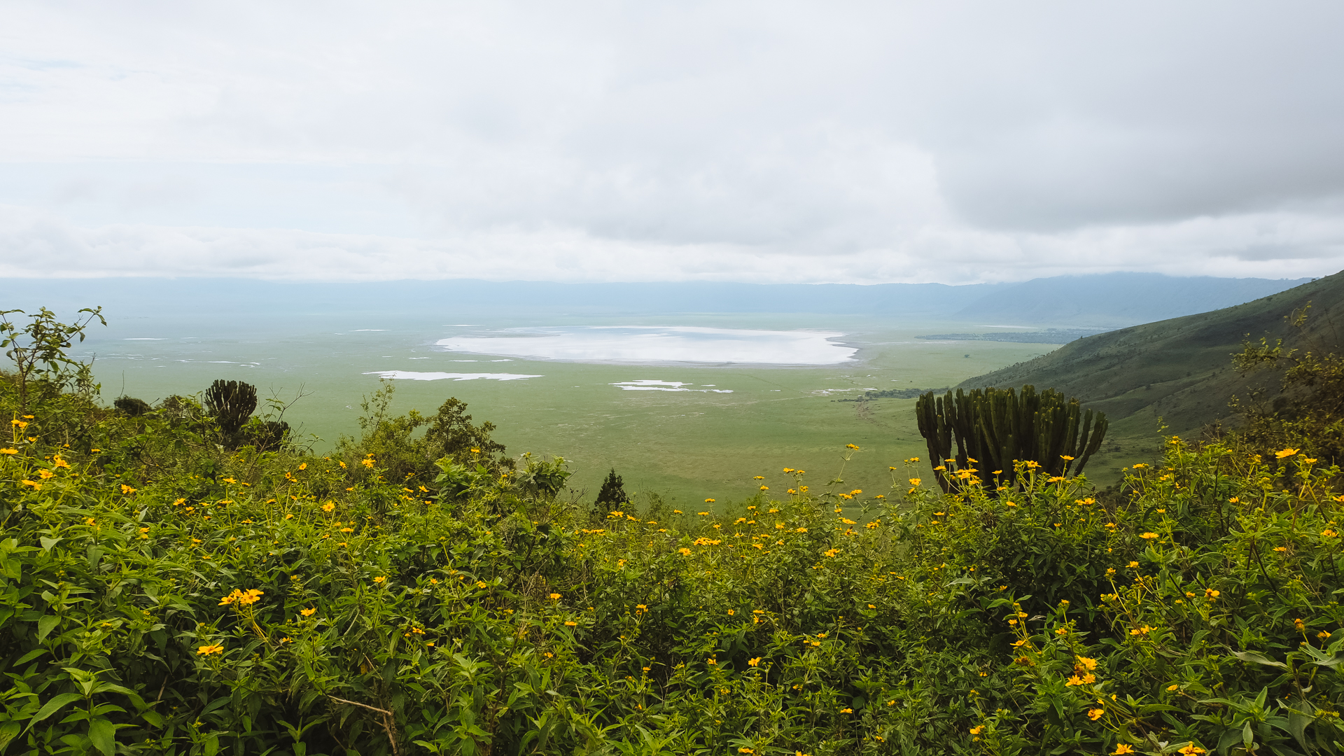 Spectacular view from on the ledge of the crater in the Ngorongoro Conservation Area, Tanzania