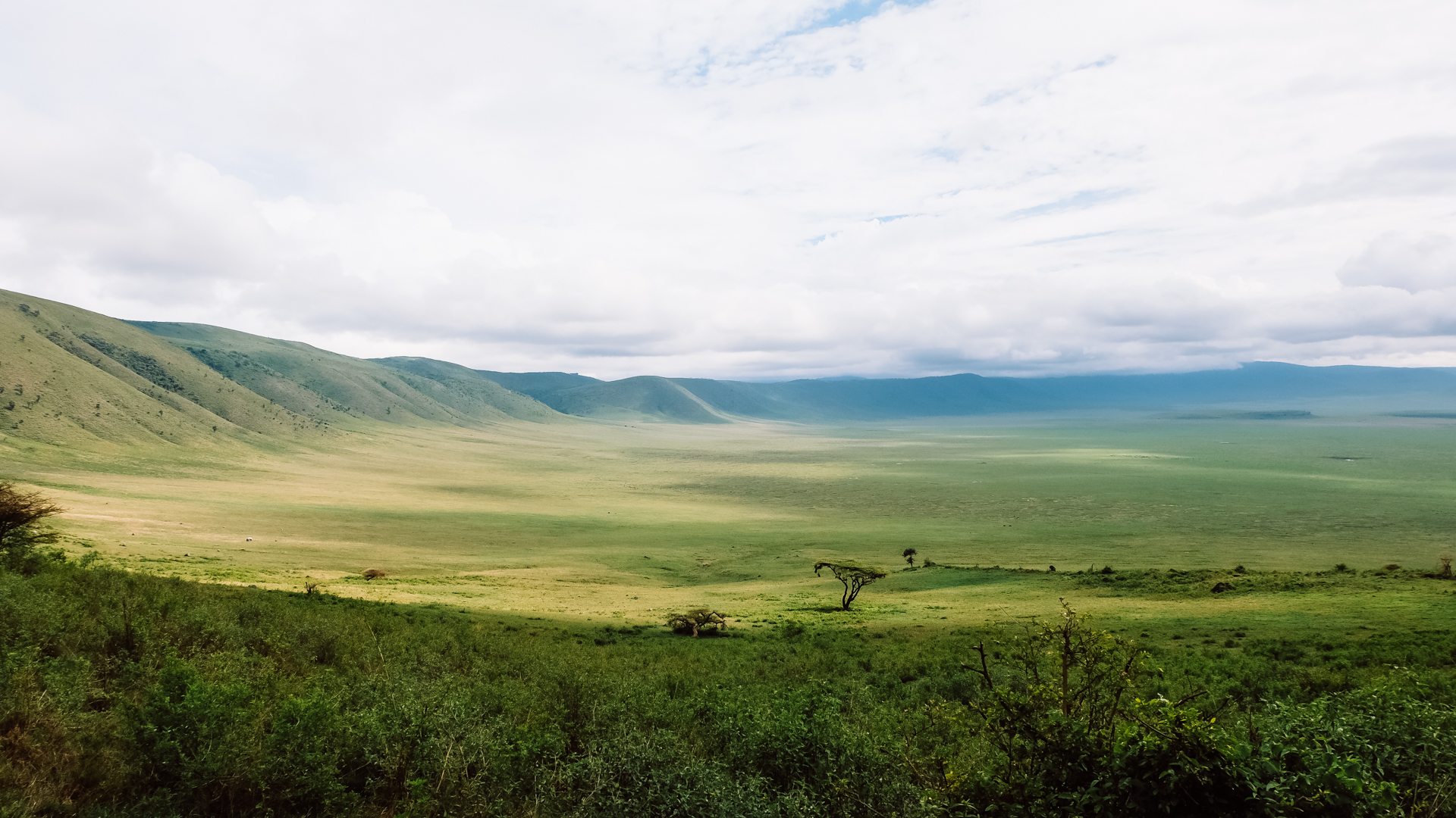 An absolutely stunning view of the crater in the Ngorongoro Conservation Area, Tanzania
