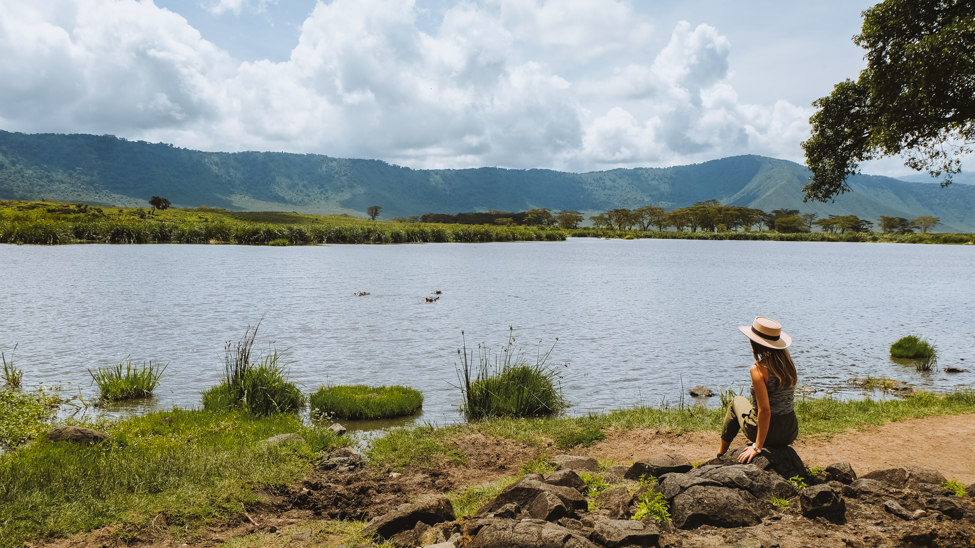 Jana watching the hippos bathe. There must have been dozens of them at least.